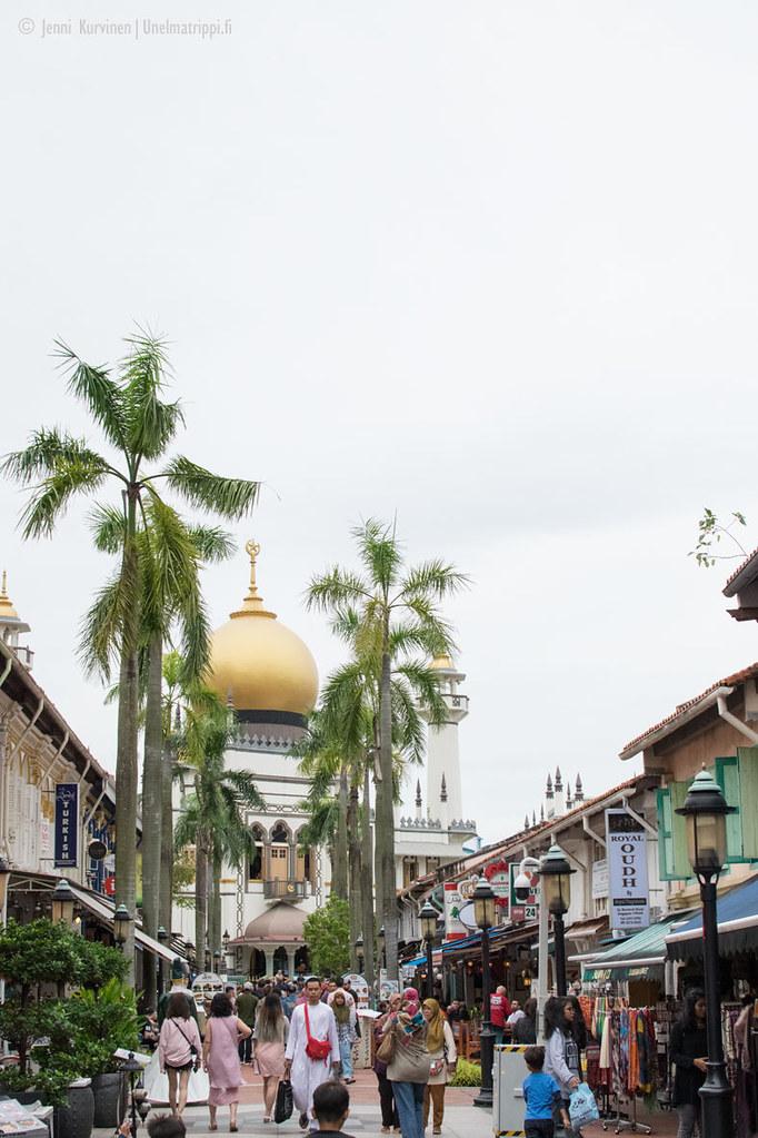 Ihmisiä Singaporen Arab Townin kaduilla