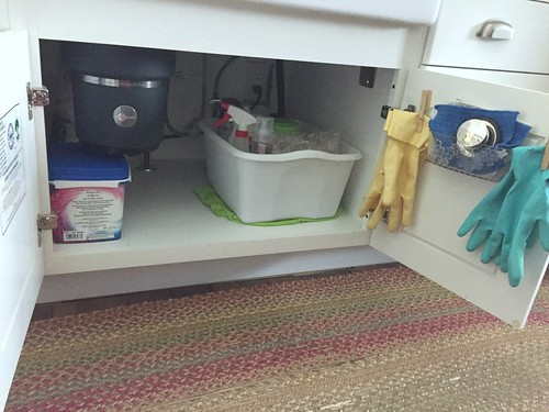 cleaning products stored under the kitchen sink