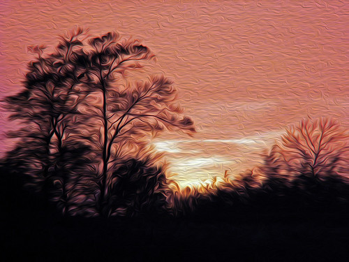 somerset loisfarm sunset trees oil oilfilter filters 1001nights 1001nightsmagiccity 1001nightsmagicwindow
