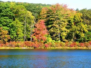 Vermont Fall Landscape