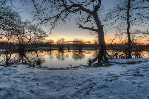 rivacre valley england uk sunset pump pit wirral water reflection rob pitt river landscape tree sky wood lake serene 750d tokina 1116 snow