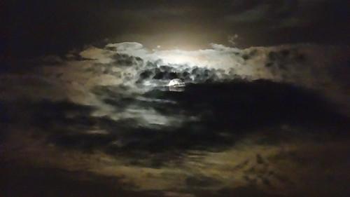 Wenn der Mond  in den Wolken dich heute zum Beschluß also wackeln sieht, denn wirklich wir trieben es mäßiglich und tranken und lärmten nicht allzuviel. Doch wird dir zu schwer dein sanft Herzelein, gehst du ja nun hin zu dem Beichtiger und gestehst alle deine Sünden 00016