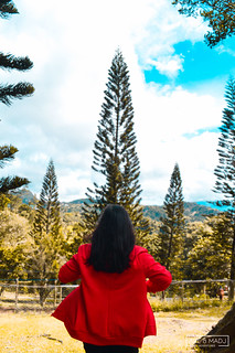 Picnic Grove, Tagaytay City, PH | by Are & Madj Adventures