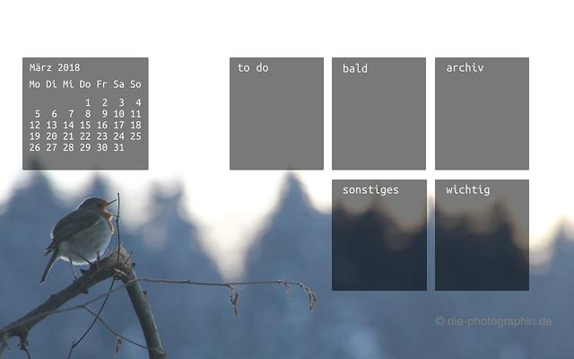 maerz2018-rotkehlchen-organizedDesktop-wallpaperliebe-diephotographin