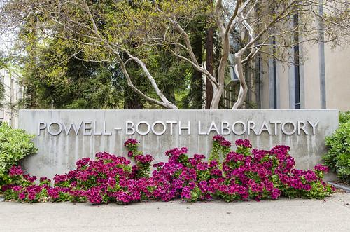 Powell-Booth_9050.jpg