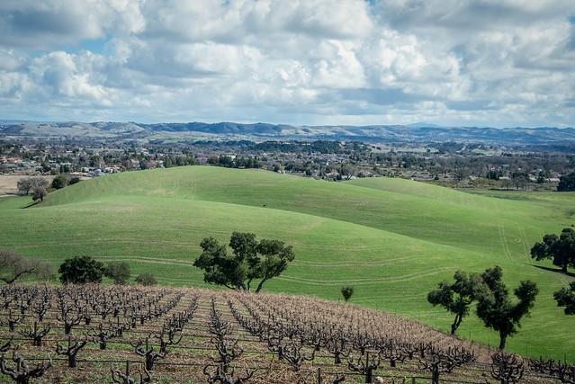 Guyomar winery