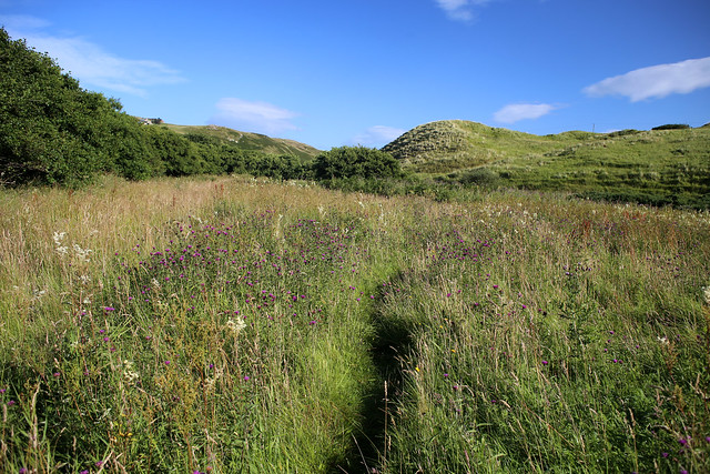 Path to Strathy Bay