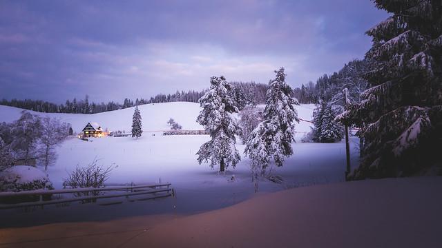 Frozen blue hour