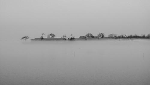 fog port portwashington nystate usa us newyork foggy weather rain rainy coast longisland longislandny trees water waterislife 2018 january2018 hogophoto lx3 panasonic