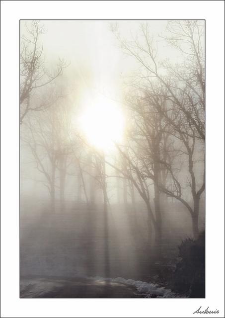 Luz para un frío domingo de invierno