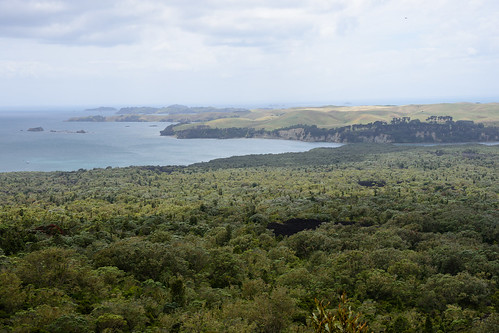 View towards Islington Bay, Rangitoto Island | by Zack A.