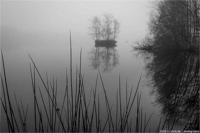 _misty