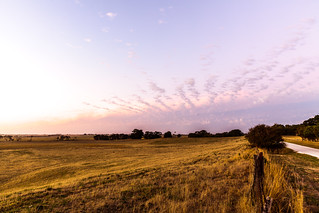 Farm Land, South Australia | by russellstreet
