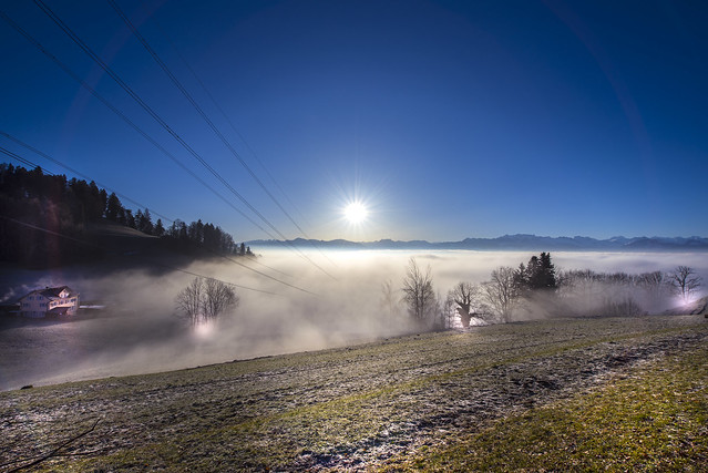 Over the fog - Hinwil - Switzerland