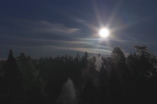 sun sky cold blue forest winter canon canon7dmarkii outdoor landscape explore