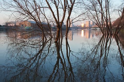 seine crue alfortville arbres reflet eau coucherdusoleil hiver
