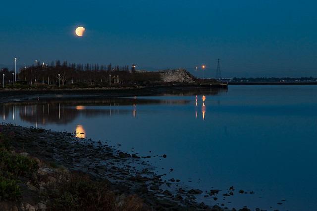 Super Moon Set Over the Slough