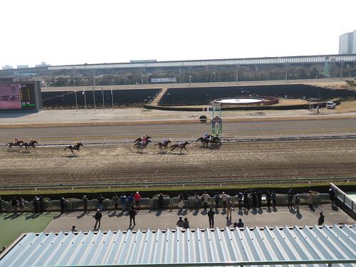 船橋競馬場のスタンド4階からのレース風景