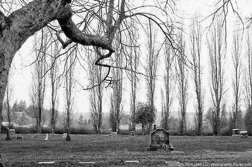 anacortes fidalgoisland sanjuanislands skagitcounty skagit washingtonstate washington cemetery grandviewcemetery graveyard blackandwhite bw monochrome winter a266122photographyproduction nikoncoolpixl22 nikon coolpix l22