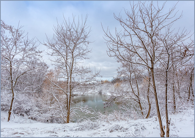 Winter Wonderland on the Red Hill Creek