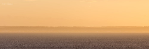 atsea blueandorange dawn goldenhour goodmorning haze mist orange sunrise horten vestfold norway no