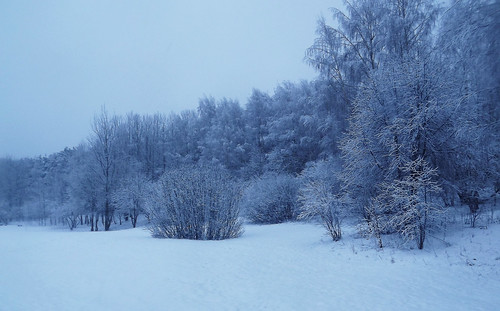 winter cold lietuva lithuania