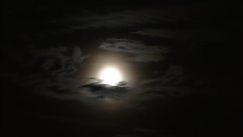 Himmel, Erde und Mond in allen Regionen wohnt Lachen und Thräne als ungleiche, doch gesellige Nachbarn, nahe beisammen, doch hier zumeist in der heiligen Stadt voll Hochmuth war es und Zanksucht schon und übelredend und voll Hohn, zum Malen schickt es leicht sich an für den, der Bilder machen kann 0014
