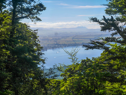Trail climbs high above Lake Te Anau (and the town of Te Anau) | by snackronym