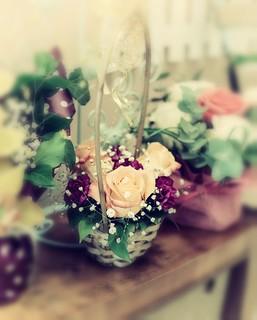 Rose | by gacebace1