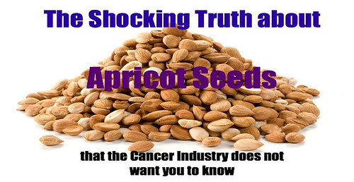 What Doctors Will NEVER Tell You: Apricot Seeds Kill Cancer Cells Without Side Effects!