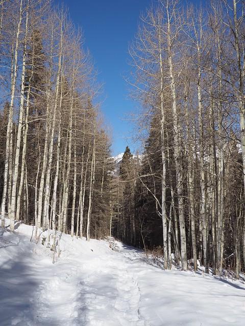 水, 2018-01-17 14:01 - Bear Creek Trail