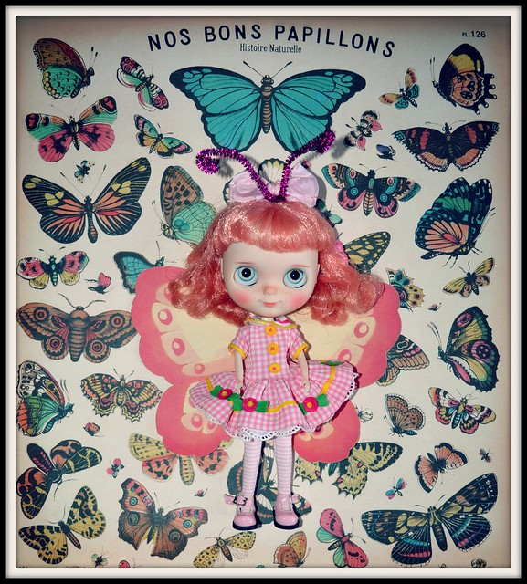 BaD Feb 26 - Love is a Butterfly