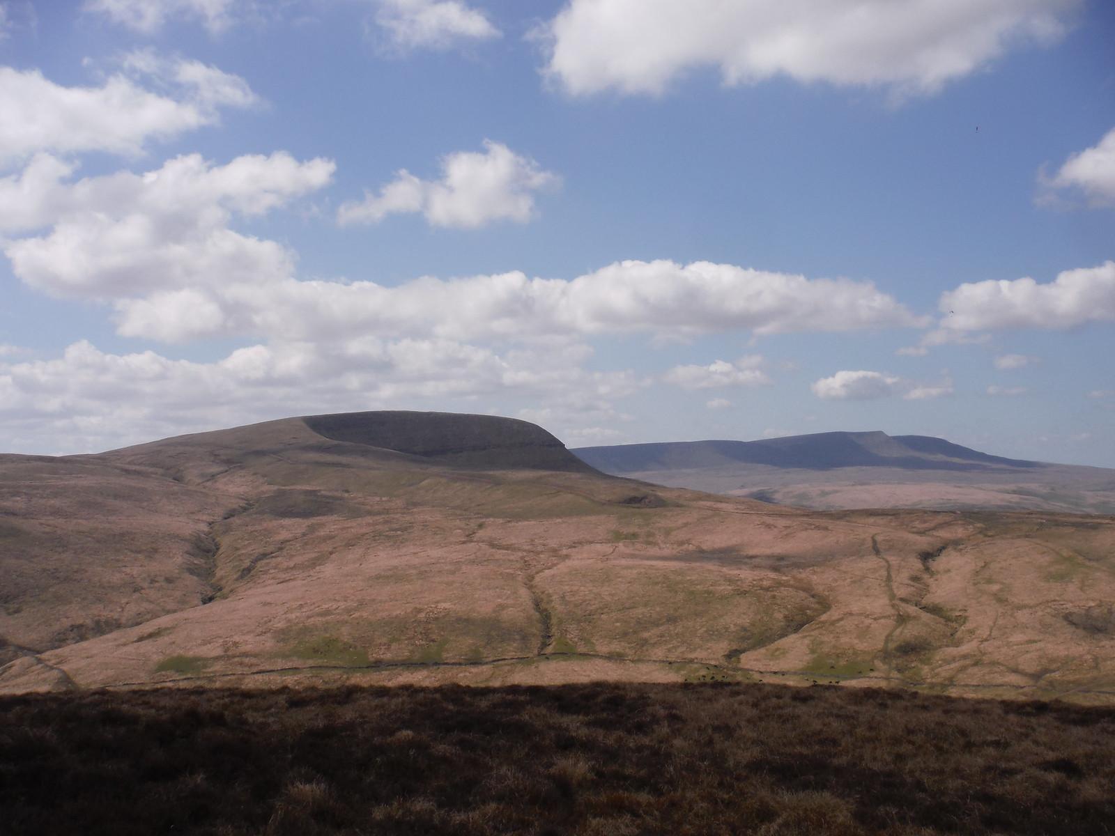 Fan Gyhirych and The Black Mountain (Y Mynydd Du), from Fan Nedd SWC Walk 307 - Fforest Fawr Traverse (Craig y Nos to Llwyn-y-celyn)