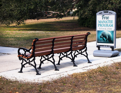 manatee manateepark fortmyersflorida bench hbm happybenchmonday seacows freethemanatee