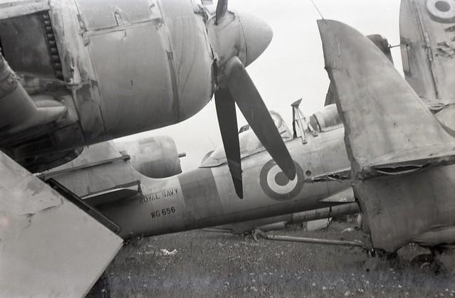 WG656. Ex Royal Navy Hawker Sea Fury T.20 - explored