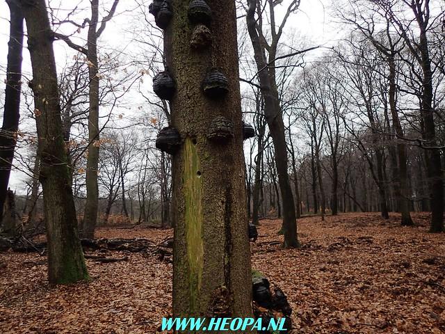 2018-01-10   Wenum-Wiesel     26 Km (50)