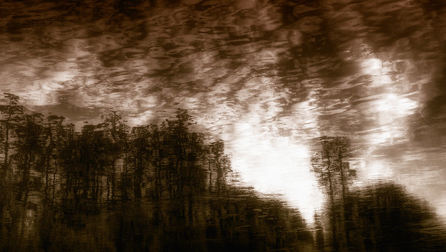 Landscape Puddle