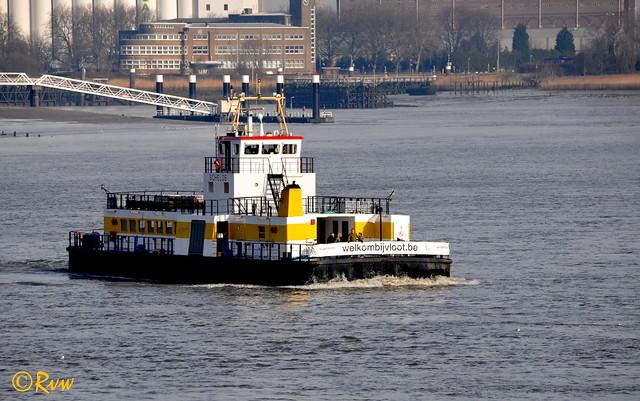 Antwerpen / Anvers -- Veerpont