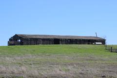 Abandoned Barn, Denverton