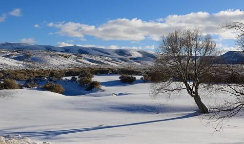 wyoming sweetwatercounty winter snow shadow tree mountains