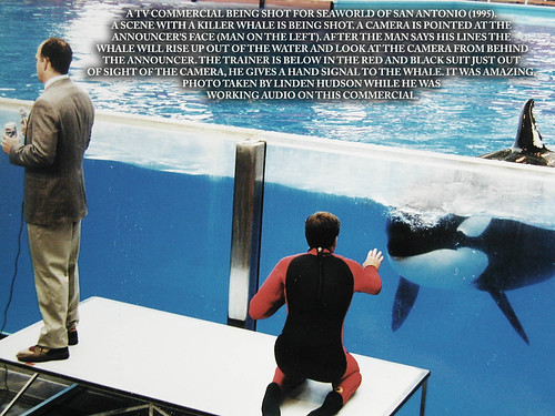 TV Commercial Shot With Killer Whale | by lindenhud1