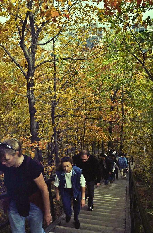 2001 fall mtryl-13