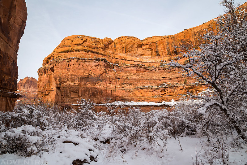Winter Canyon
