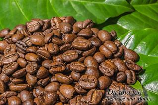 Kaffeebohnen und Blätter
