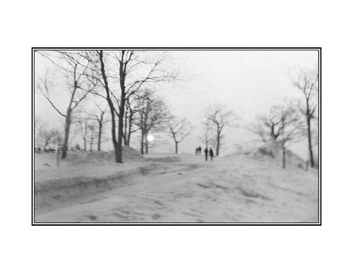 Promenade sur le Mont Royal / Walk on Mont Royal  1969 | by bernard marenger photo imagination