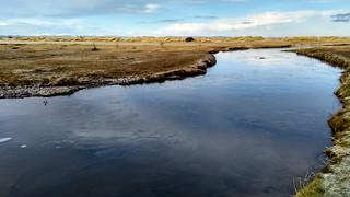 Moray Firth | by BlackDaffodil