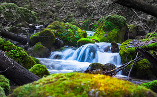 Flowing Water | by Theo Crazzolara