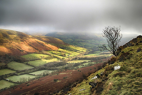 cwmsorgwm blackmountains breconbeacons nationalpark hill hillside mountain mountainside valley sunlight sunshine cloud lowcloud tree slope fields field farmland countryside outside outdoor rural nature scenic scenery view viewpoint landscape