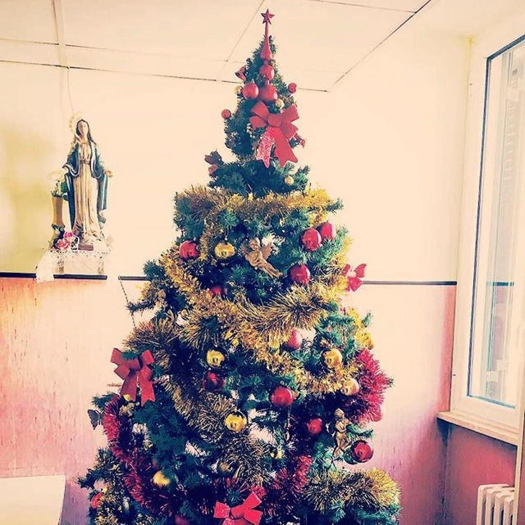 Foto Di Un Albero Di Natale.Buongiorno Sapienza Con Una Foto Di Un Albero Di Natale D