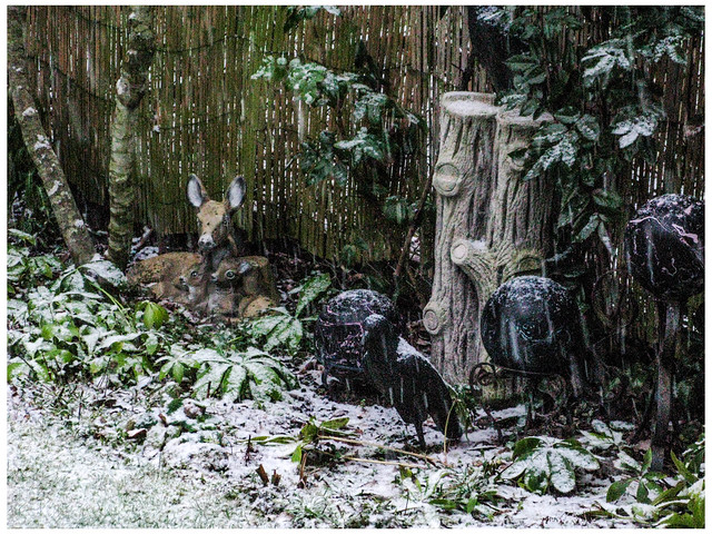 Garden Corner in the Snow
